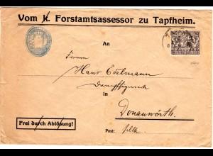 Bayern 1919, 25 Pf. Dienst auf Brief v. Forstamt TAPFHEIM