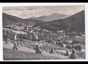 Italien, Bozen Bolzano Colle Isarco, Südtirol Alto Adige sw-AK.#221