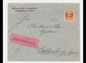 Bayern 1919, EF 30 Pf. auf Geschäfts Brief v. Ludwigshafen n. Schweden. #2716
