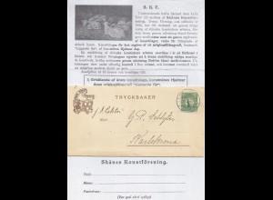 Schweden 1920, Skane Konstforening, Bilder Brief v. Malmö m. 5 öre. #2200