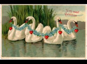 To My Sweet Valentine mit 4 Schwänen, 1908 gebr. Präge-Farb-AK