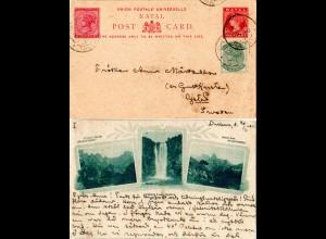 Natal 1901, 1/2+1d Zusatzfr. auf 1d Bild Ganzsache v. Durban n. Schweden