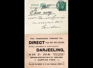 GB 1902, Darjeeeling, Kyel Tea Company stationery card used in London