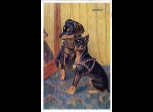 2 Dackel/Pinscher vor einem Spiegel, 1920 gebr. Hunde Farb-AK