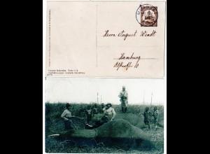DOA 1908, 2 1/2 H. Elefantenjagd Privat Ganzsache m. Stpl. MUANZA