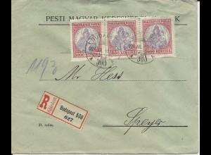 Ungarn 1924, 3er-Streifen 3000 Kr. auf Einschreiben Brief n. Speyer, DR. #2242