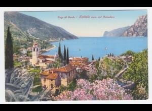 Italien, Torbole, Lago di Garda, Gardasee, ungebr. Farb AK. #1467