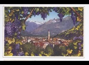 Italien, Meran im Wein Rahmen, Südtirol Alto Adige Farb AK. #467