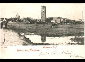 Borkum, 1899 gebr. Gruss aus...sw-AK.
