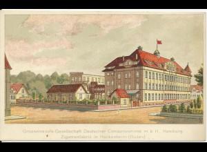 Hockenheim Zigarrenfabrik, ungebr. Farb AK