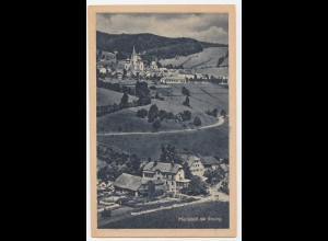 Österreich, Steiermark, Mariazell mit Rasing, ungebr. sw AK. #2264