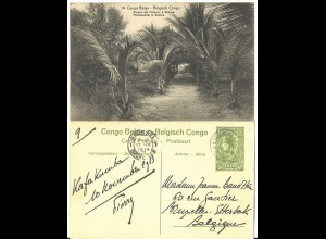 Belgisch Congo, 1914 gebr. 5 C. Bild Ganzsache m. Palmen